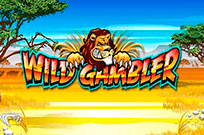 Азартный слот Дикий Игрок на зеркале казино казино GMSlots